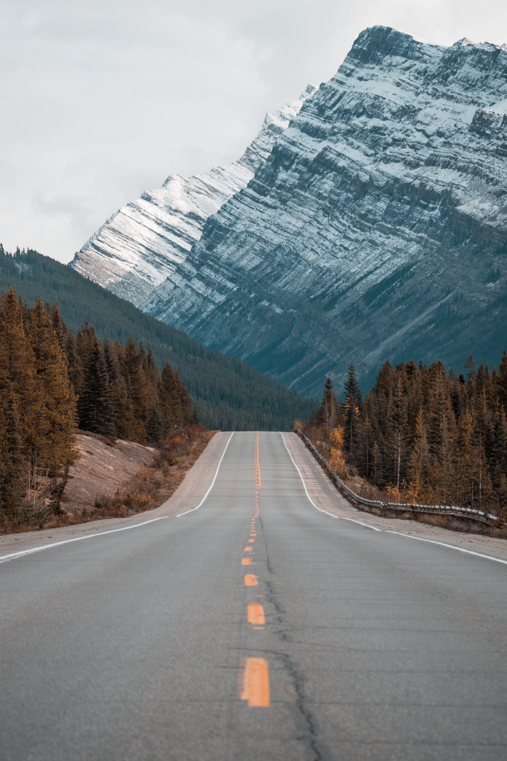 Droga w górach będąca metaforą właściwego kierunku drogi zawodowej